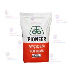 DuPont Pioneer P63MM54 Ayçiçeği Tohumu İlaçlı Cruiser