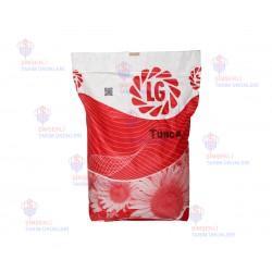 Limagrain Tunca Hibrid Yağlık Ayçiçeği Tohumu
