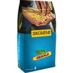 Monsanto Dekalp DKC6050 Mısır Tohumu İlaçsız